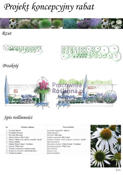 7.-projekt-rabaty-z-lawendÄ…